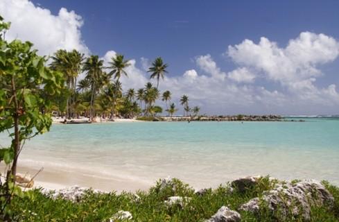Lagoon 380 Catamaran Two Layout Option On Long Distance Guadeloupe Yacht ...