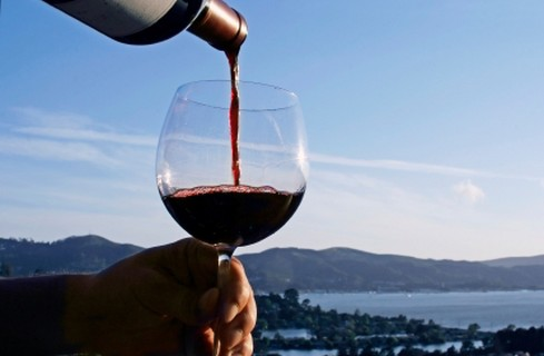Wine Yacht Charter